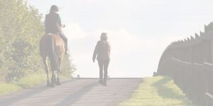 Background image of horses as teachers, equine facilitated learning in somerset