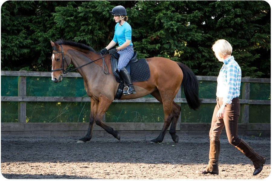 image of a riding client on her horse during a coaching session in somerset uk