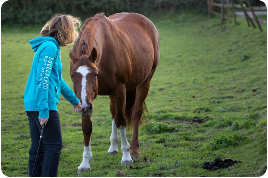 a woman standing with a horse who is working in partnership with her to help her become authentic, near Bath uk