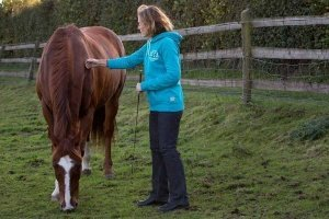 image of a workshop client on the discover workshop stroking a horse which is grazing peacefully