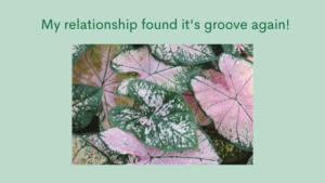 harmony in relationship